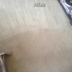 Aurora-Carpet-Cleaning-Company
