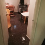 Aurora-office-room-flood-damage-repair
