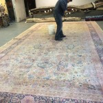 Commercial Carpet Cleaning Aurora